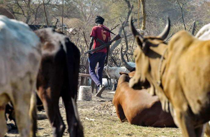 Au Soudan du Sud, la guerre sans fin des éleveurs surarmés