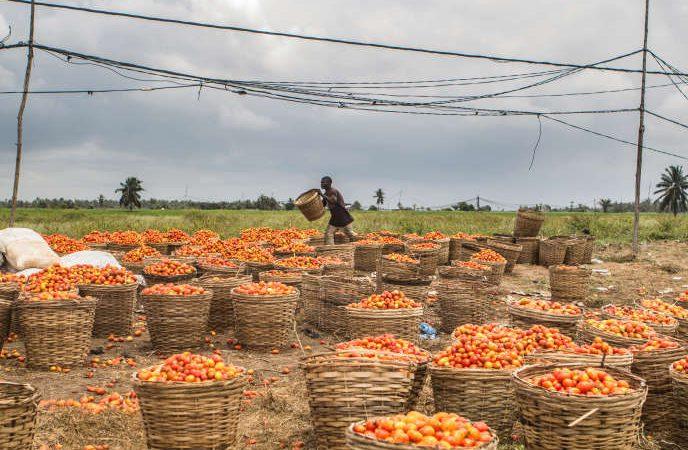 Une partie de l'aide au développement des pays pauvres est détournée vers les paradis fiscaux