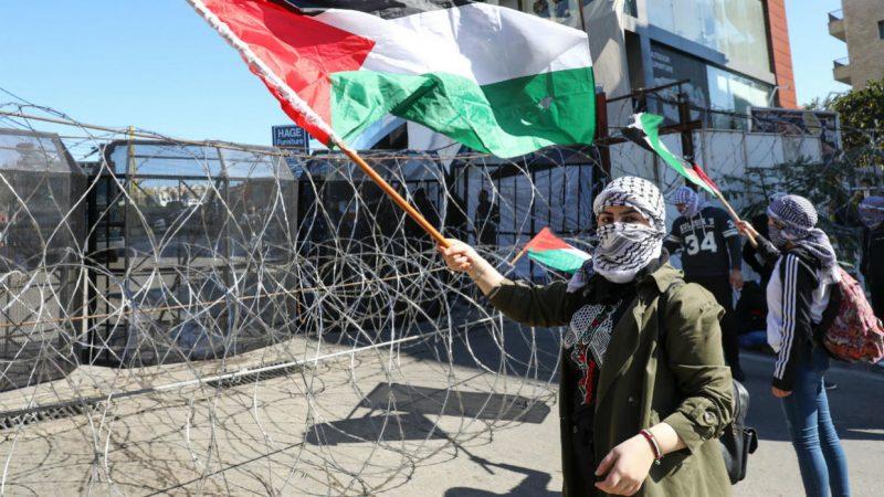 La «guerre des veaux» : bras de fer commercial entre Israéliens et Palestiniens