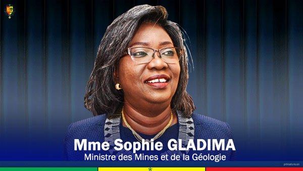 Création de la Société des mines du Sénégal : L'Assemblée Nationale valide le projet