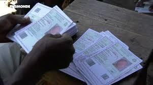 Election présidentielle en Guinée : dix petits candidats dans l'ombre des « mastodontes »