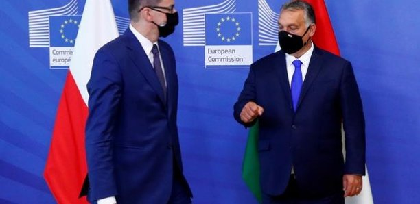 Covid-19: l'Union Européenne au chevet de son plan de relance