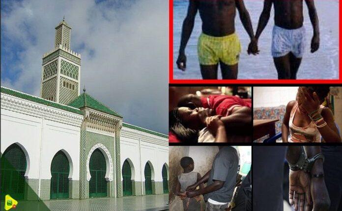 Homosexualité, Viol, Vol : Les Occupants Des Cantines De La Grande Mosquée De Font Des Révélations