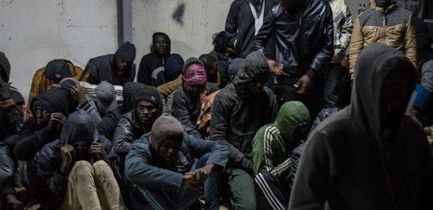 700 Sénégalais rapatriés d'Allemagne