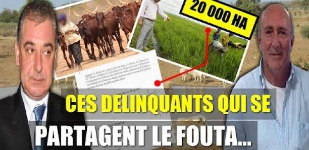 20 000 hectares de ses terres attribués à des étrangers : Le Fouta menacé de disparition ? (Par Xalaat TV)