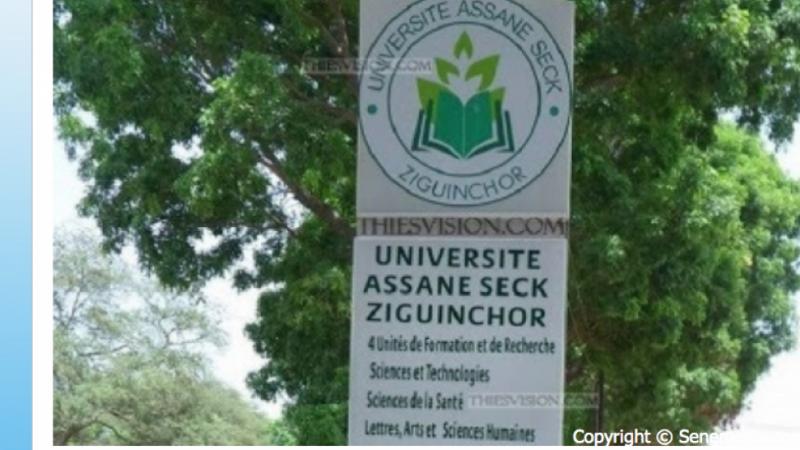 Université Assane Seck de Ziguinchor : L'intersyndicale fusille le ministre Cheikh Omar Hann